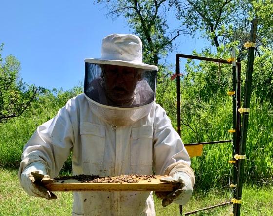 Beekeeper John Martin of Stonebridge Farm